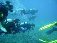 Best Diving Spots in Egypt