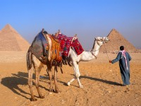 Visitor's Tip's for the Great Pyramid of Giza 