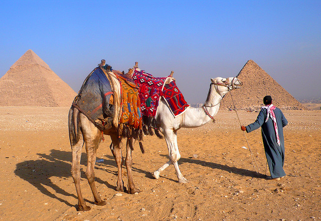 camel ride to the Pyramids